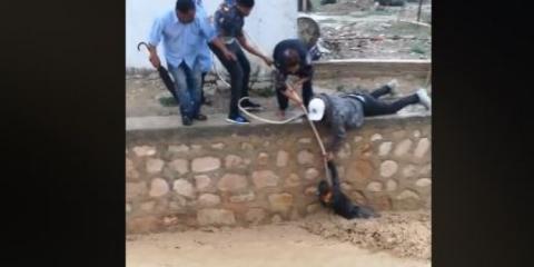 عملية إنقاذ الطفل الذي سقط في مجرى وادي بالفحص